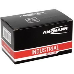 PILES 6LR61 ALCALINES INDUSTRIAL 9V 500mAh x10